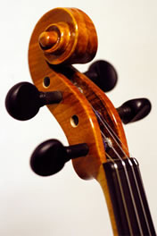 about the violin